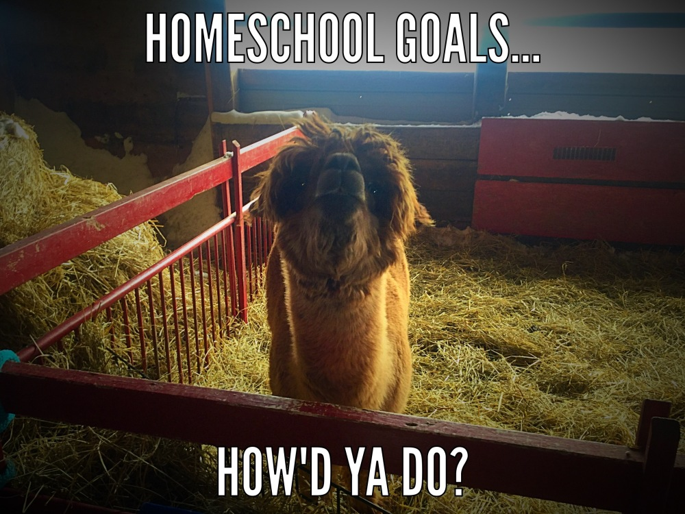 Homeschool Goals Revisited...how did it go? (1/2)